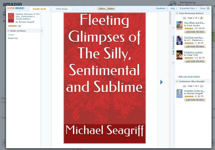 Amazon.com  Fleeting Glimpses of The Silly  Sentimental and Sublime eBook  Michael Seagriff  Kindle Store
