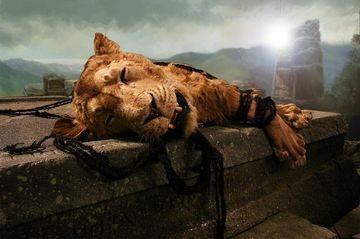 shorn-lion