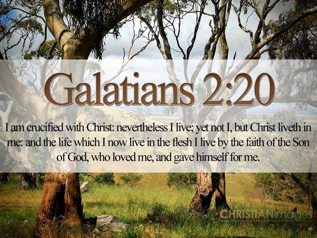 Bible Quotes About Love Bibleversesonlovegalatians22021Treeshdwallpaper  Joy Of