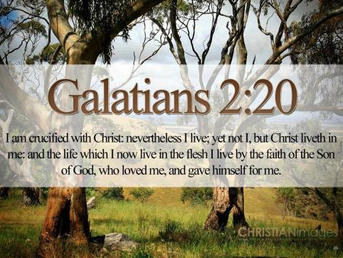 Bible-Verses-On-Love-Galatians-2-20-21-Trees-HD-Wallpaper