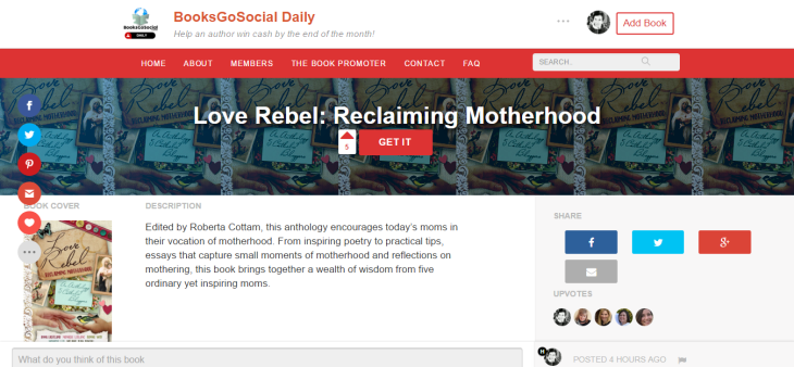 Love Rebel Reclaiming Motherhood BooksGoSocial Daily
